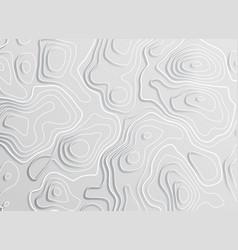 3d topographic map contour elevation concept vector image