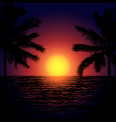 tropical beach at sunset vector image vector image