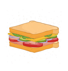 Appetizing sandwich isolated on white background vector
