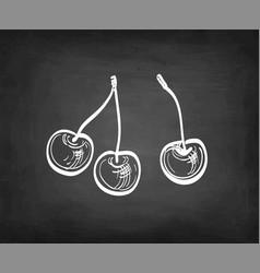 Chalk sketch sweet cherry vector