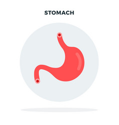 colored human stomach flat vector image