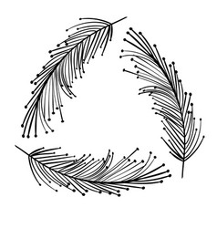 rustic feathers decoration design vector image