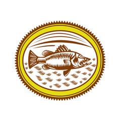 saltwater barramundi rosette woodcut vector image