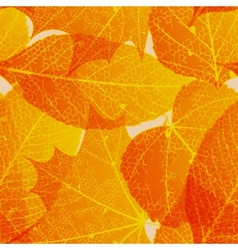 Seamless autumn leaves pattern plus EPS10 vector