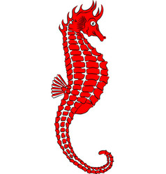 red seahorse vector image
