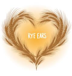 Rye ears heart isolated vector