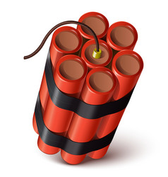 Bundle of red dynamite vector image