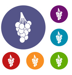Grapes icons set vector