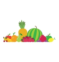 group fruits vector image