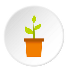 Plant in clay pot icon circle vector