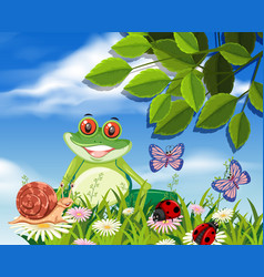 red eyed tree frog in nature vector image