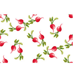 Seamless pattern of radishes vector
