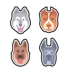 set dogs for set vector image