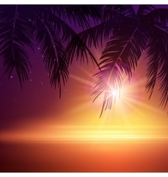 Summer night palm trees in night vector