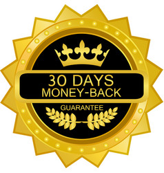 thirty days money back guarantee vector image vector image