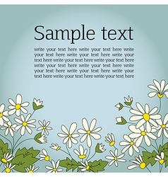 Card with the image of daisies camomile vector image