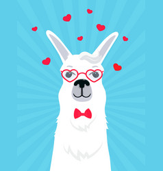 llama in love in a bow tie and heart-shaped vector image