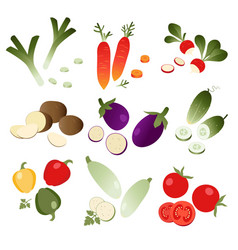 set of vegetables on white background vector image