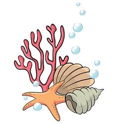 Shells and starfish under sea vector