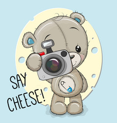 Teddy bear with a camera on a cheese background vector