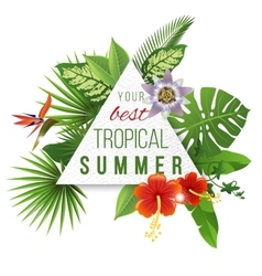 Tropical paper emblem with type design vector image