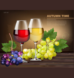 Two glasses of wine and grapes vine vector