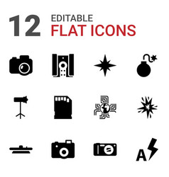 12 flash icons vector