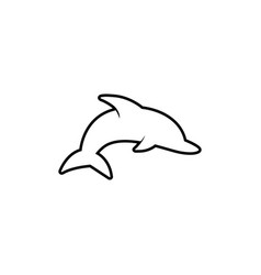 dolphin graphic design template isolated vector image
