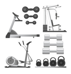 Fitness workout equipment training apparatus vector