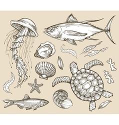 Hand drawn sketch set marine animals wildlife vector image
