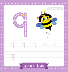 Letter q lowercase tracing practice worksheet vector
