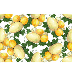 melon summer fruits seamless pattern with vector image vector image