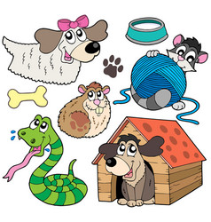 pet collection 2 vector image