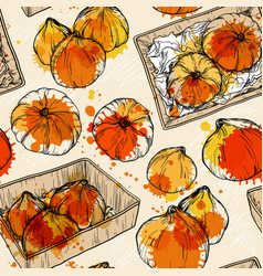 seamless pattern with hand drawn pumpkin vector image