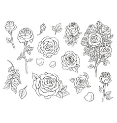 Set of ink hand drawn stylized flowers vector image