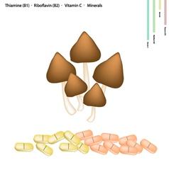 Termite mushroom with vitamin b1 and b2 vector