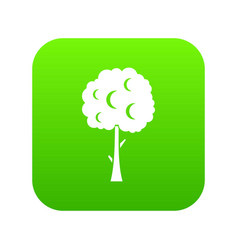 Tree with spherical crown icon digital green vector