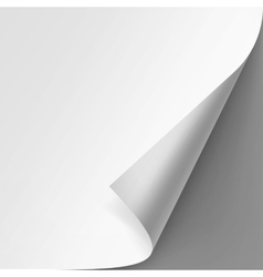 Curled corner of White paper on Gray Background vector image