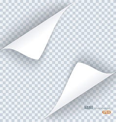 Page curl with shadow on transparent background vector image