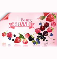 Berry mix falling banner vector