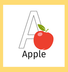 apple and letter a coloring page vector image