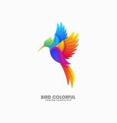 bird colorful designs template vector image