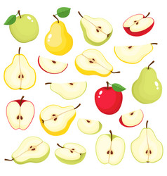 bright set of colorful juicy apple and pear vector image