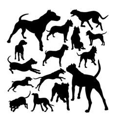 dogo argentino dog animal silhouettes vector image