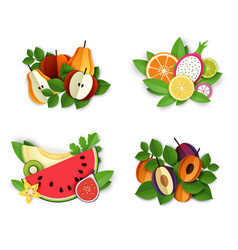 Fruits and berries composition set vector