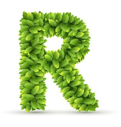 Letter R alphabet of green leaves vector image