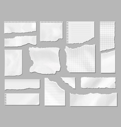 Paper different scraps set ripped page piece vector