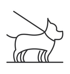 pet dog with leash linear icon design vector image