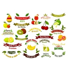 Ripe farm fruits design elements vector image