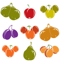 Set of colorful different ripe sweet fruits vector